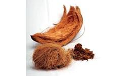 serabut kelapa
